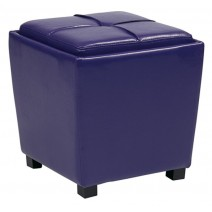 2 Piece Ottoman Set in Purple Vinyl